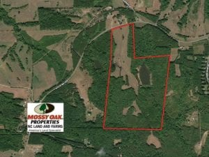 127 Acres of Farm and Hunting Land for Sale in Person County NC!