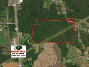 60 Acres of Hunting Land with Investment Timber For Sale in Rockingham County NC!