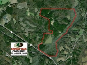 255 Acres of Hunting Land and Investment Timber For Sale in Caswell County NC!