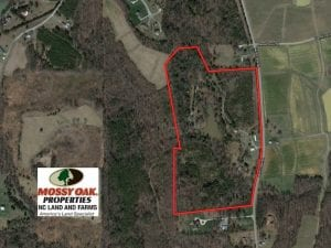 40 Acre Farm with Two Houses For Sale in Alamance County NC!