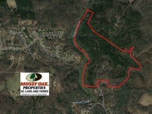 66 Acres of Hunting and Investment Timber Land For Sale in Randolph County NC!