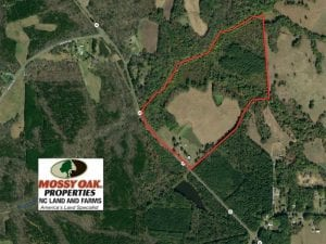 SOLD!  83 Acre Farm with Home Hunting and Investment Timber Land For Sale in Caswell County NC!