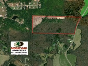 59 Acres of Hunting and Investment Timber Land For Sale in Person County NC!