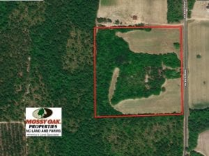 24 Acres of Farm and Hunting Land For Sale in Scotland County NC!
