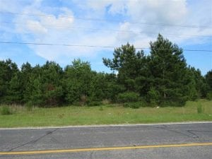 UNDER CONTRACT!  44 Acres of Residential Land in Robeson County NC!