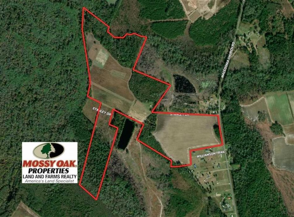 110 Acres Of Farm And Timber Land For Sale In Columbus County Nc Mossy Oak Properties Nc Land And Farms