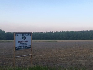 A rural farm for sale in Edgecombe County located 15 minutes from Historic Tarboro