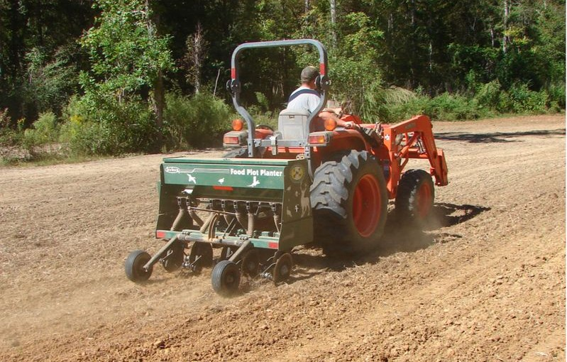 Planning for the New Year, what will you do to make your piece of dirt the best it can be?