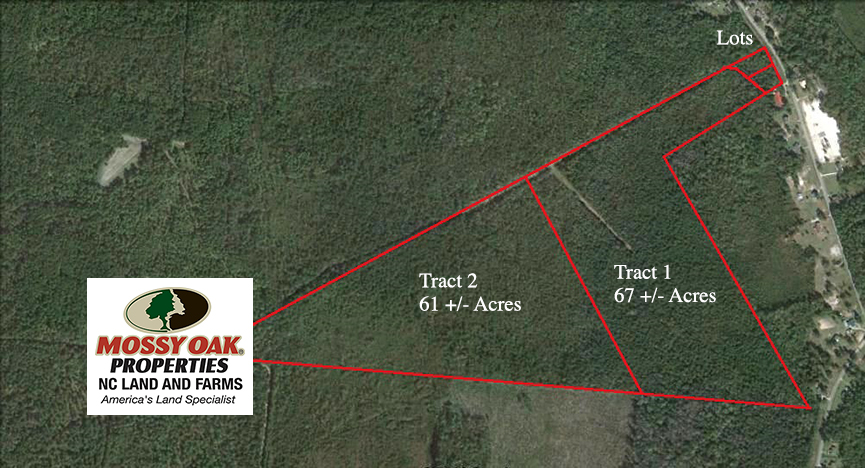 SOLD!  67 Acre Hunting Land for Sale in Pender County NC