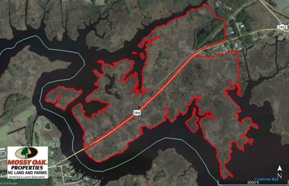 SOLD!  286 ac Waterfront Hunting Land for Sale in Hyde County NC!