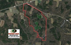 UNDER CONTRACT!  105 Acres of Timber and Farm Land with Pond For Sale in Caswell County NC!