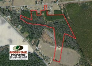UNDER CONTRACT!  43 Acres of Hunting and Timber Land For Sale in Columbus County NC!