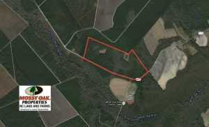 UNDER CONTRACT!!  117 Acres of Hunting and Timber Land with Cabin and Pond For Sale in Jones County!