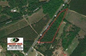 SOLD!!  5 Acres of Residential and Timber Land For Sale in Hoke County NC!