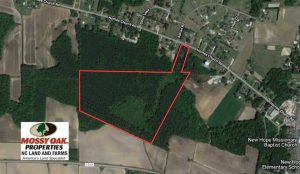 UNDER CONTRACT!  35.76 Acres of Hunting and Timber Land For Sale in Wilson County NC!