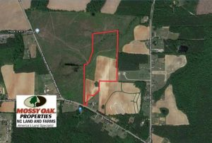 SOLD!  29.4 Acres of  Farm and Timber and For Sale in Nash County NC!