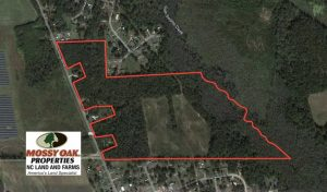 UNDER CONTRACT!!  58 Acres of Farm and Timber Land For Sale in Scotland County NC!