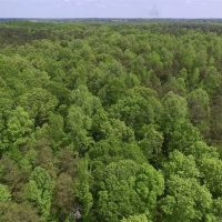 SOLD!  25 Acres of Hunting and Residential Land For Sale in Lunenburg County VA!
