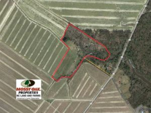 REDUCED!  21.1 Acres Recreational Land with Home For Sale in Pamlico County NC!