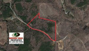 10.8 Acres of Timber and Hunting Land For Sale in Caswell County NC!