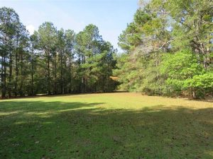 SOLD!!  59.27 Acres of Farm and Development Land for Sale in Columbus County NC!