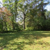 UNDER CONTRACT!!  59.27 Acres of Farm and Development Land for Sale in Columbus County NC!