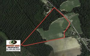 UNDER CONTRACT!!  22.5 Acres of Farm and Residential Land for Sale in Sampson County NC!