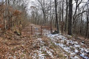REDUCED!  208 Acres of Hunting and Recreational Land For Sale in Bland County VA!