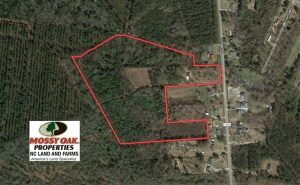27 Acres of Hunting and Timber Land For Sale in Lenoir County NC!