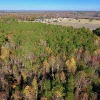 8.6 Acres of Farm and Timber Land For Sale in Cumberland County NC!