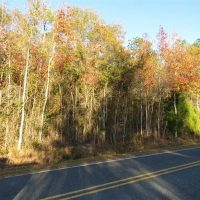 7 Acres of Residential Land For Sale in Bladen County NC!