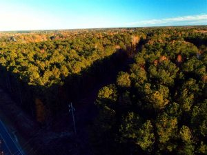 SOLD!!  7 Acres of Residential Land For Sale in Bladen County NC!