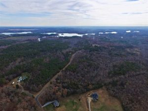 SOLD!  54 Acres of Hunting and Timber Land For Sale in Person County NC!