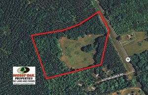 SOLD!  17 Acres of Hunting Land For Sale in Warren County NC!