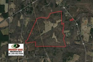 UNDER CONTRACT!!  253 Acres of Farm and Timber Land For Sale in Orange County NC!