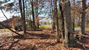 SOLD!!  39 Acres of Residential Hunting Land For Sale in Halifax County VA!