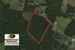 SOLD!  45 Acres of Hunting and Timber Land For Sale in Columbus County NC!