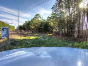SOLD!  761 Acres of Hunting Land For Sale in Accomack County VA!