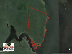 SOLD!  998 Acres of Riverfront Hunting Land For Sale in Camden County NC!