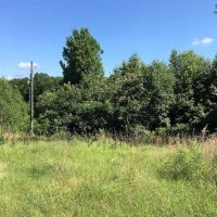 SOLD!! 8.33 Acres of  Hunting  Land For Sale in Halifax County VA!