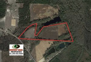 20 Acres of Farm and Hunting Land For Sale in Robeson County NC!