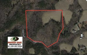 37.31 Acres of Multi-Use Land For Sale in Person County NC!