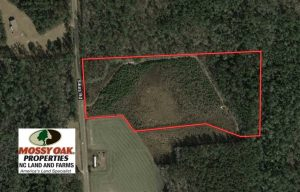 13.79 Acres of Development and Hunting Land for Sale in Columbus County NC!