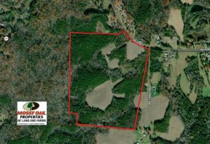 79.32 Acres of Farm and Hunting Land For Sale in Person County NC!