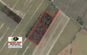 SOLD!!  12.42 Acres of Land For Sale in Perquimans County NC!