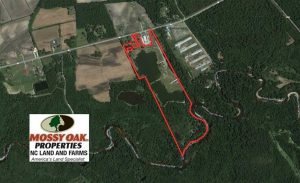 56.88 Acres of Residential and Recreational Land in Duplin County NC!