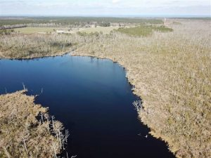SOLD!!  220 Acres of Hunting Land for Sale in Tyrrell County NC!