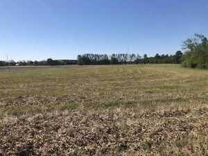 SOLD!!  38 Acres of Farm Land For Sale in Columbus County NC!