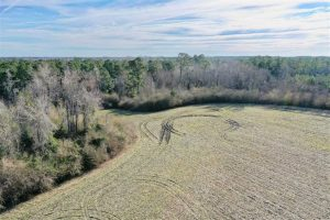 30.71 Acres of Farm and Hunting Land for Sale in Columbus County NC!