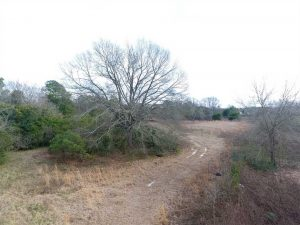 UNDER CONTRACT!!  16.97 Acres of Hunting and Residential Land for Sale in Robeson County NC!